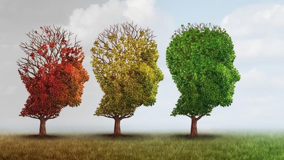 head-shaped trees